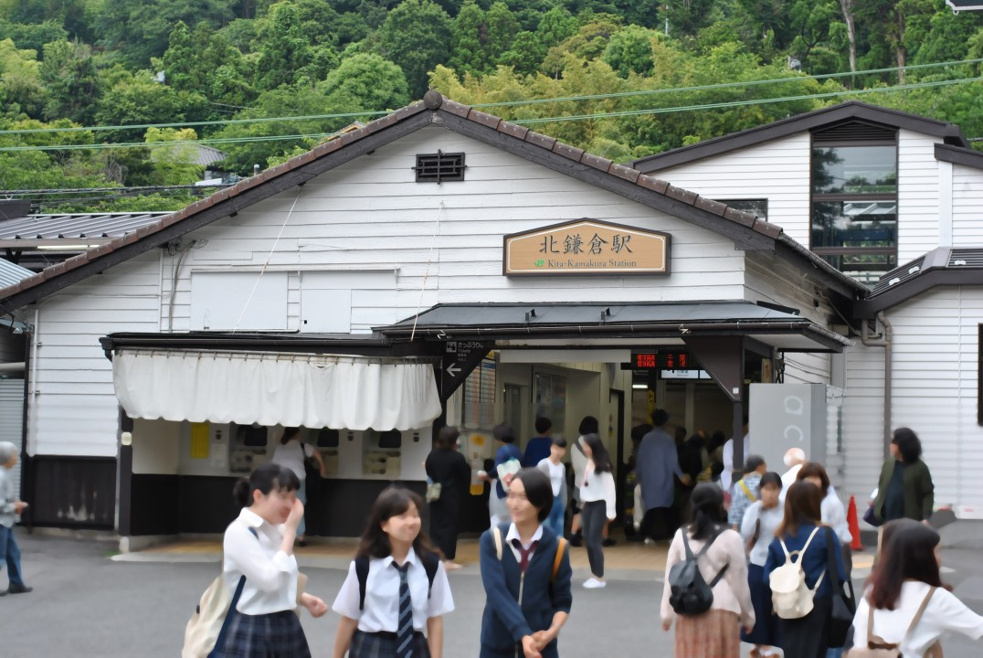 ajisai-in-kamakura_00002