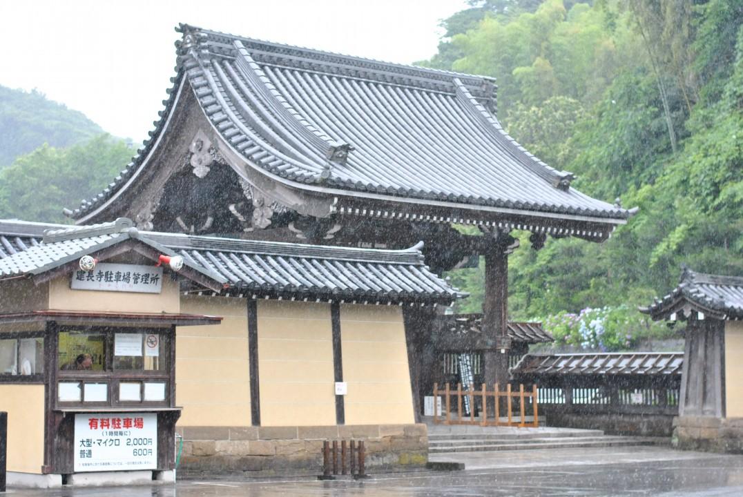 ajisai-in-kamakura_00038