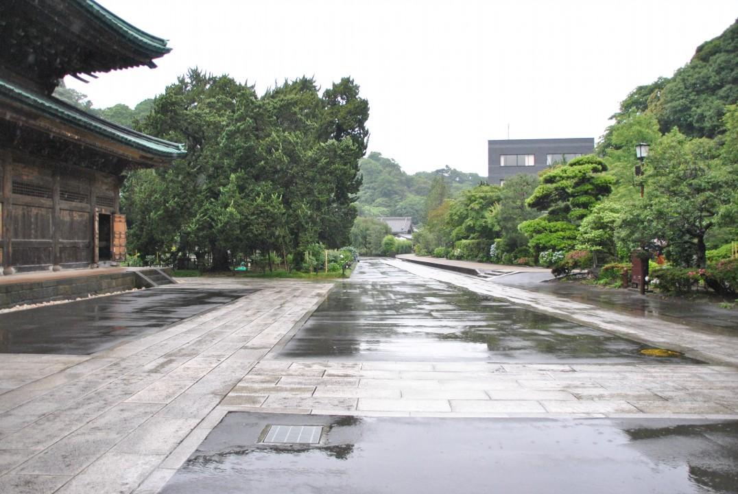 ajisai-in-kamakura_00042